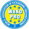 wako-pro-original-logo