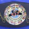 WKF PRO-AM Europa titel belt